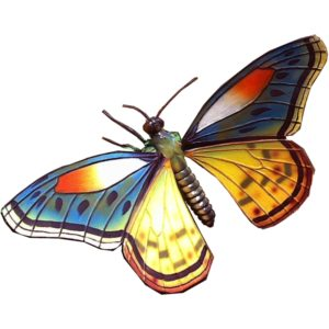 FSC1248 Butterfly (1)