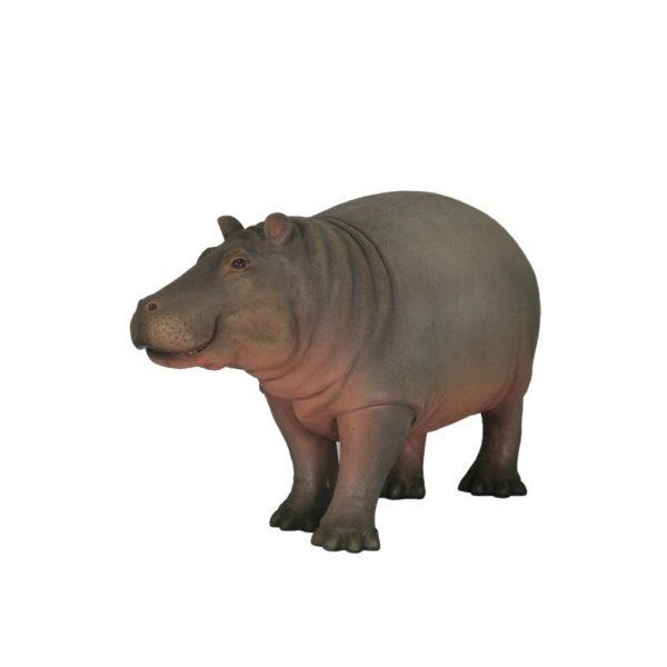 Baby-hippo-4