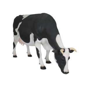 COW HEAD DOWN