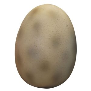 Dino Egg (Small)2