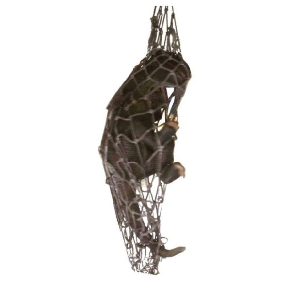 FSC1183 Dino Hanging in Net
