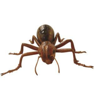 FSC1200 Ant