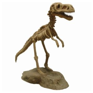 FSC1201 - DINO SKELETON WITH BASE