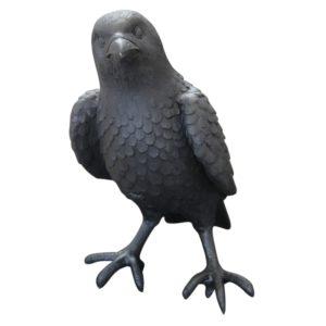 R098 crow1
