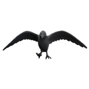 R100 crow3