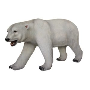 walking polar bear