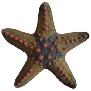 choco-chip-starfish-2