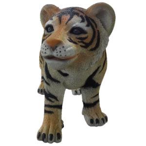 tiger-cub-sitting-2